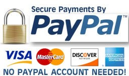 paypal_blog
