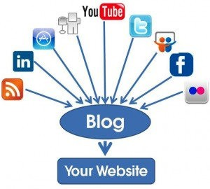 Social media, blog, website
